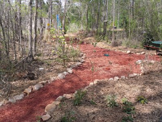 Our bird garden